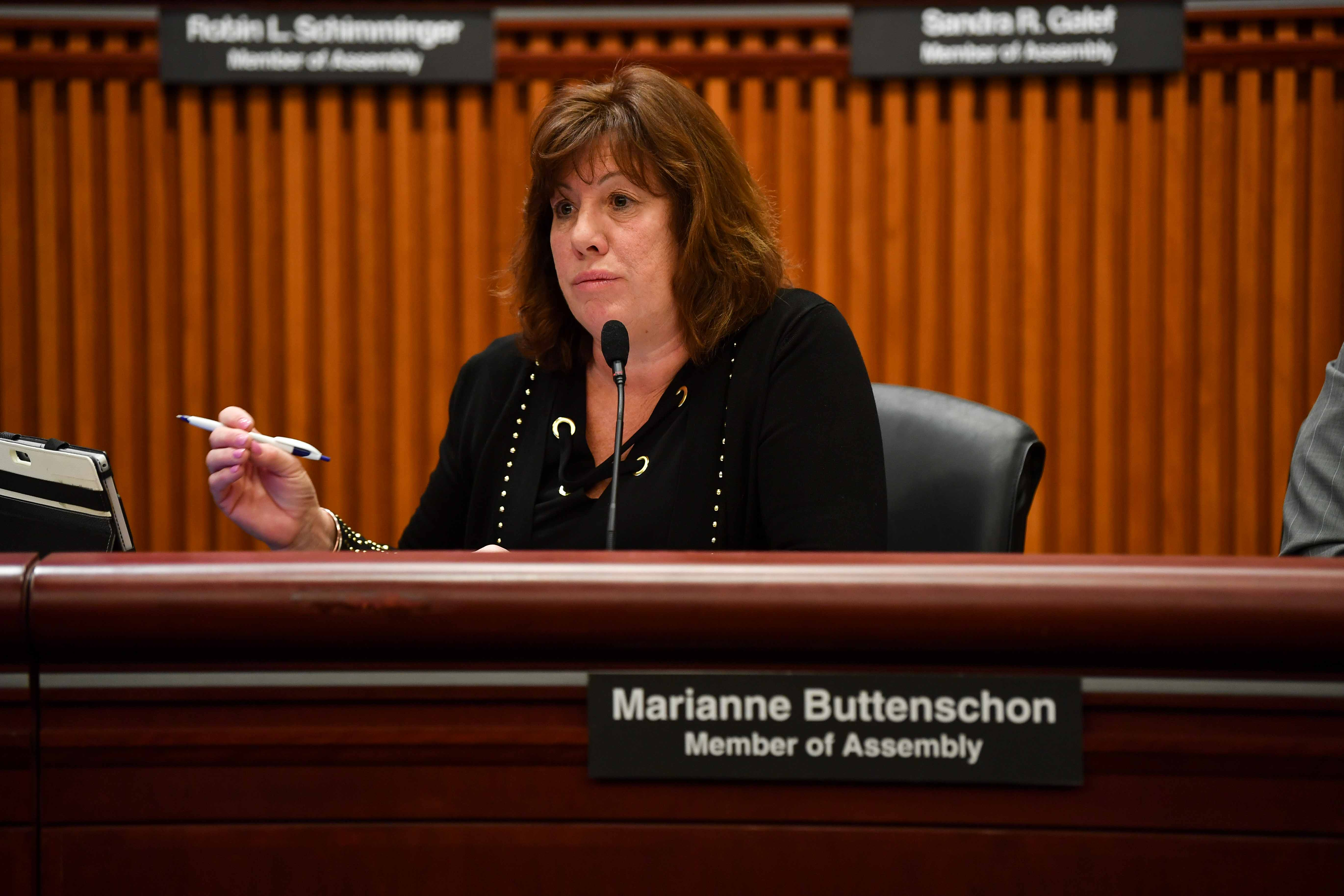 Assemblywoman Buttenschon speaking at the Economic Development Budget Hearing on February 12th, 2019.