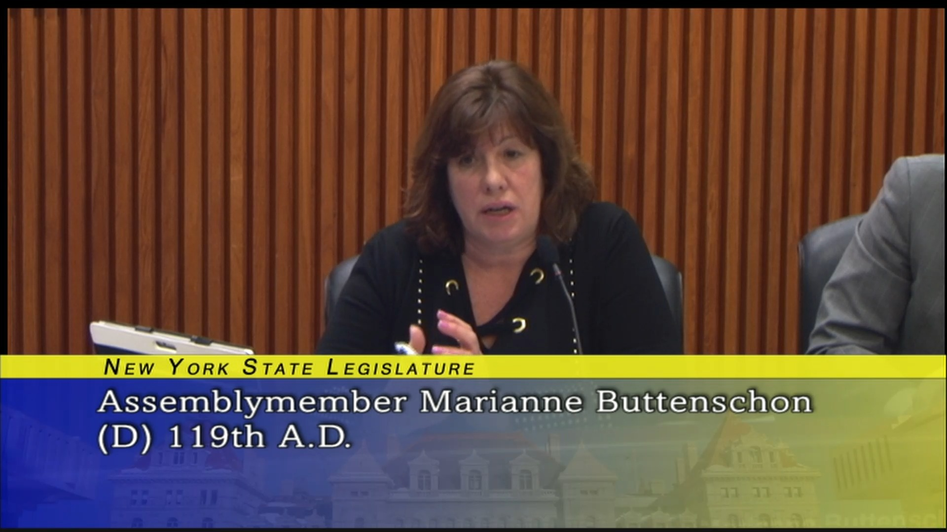 Assemblymember Buttenschon Discusses The State Of The Art Project