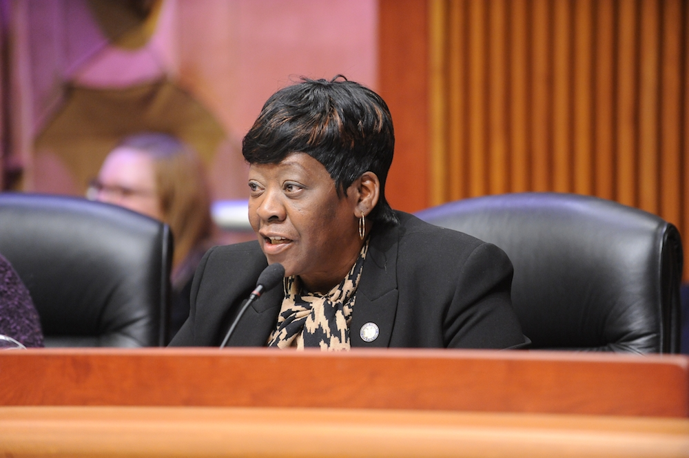 Assemblywoman Peoples-Stokes who currently Chairs the Assembly Committee on Governmental Operations, during the Public Protection Budget Hearing in Albany.