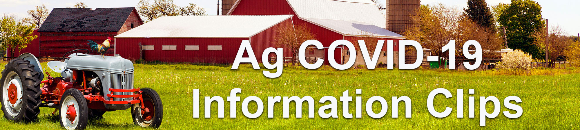Covid-19 Clips from Donna Lupardo, Ag Chair